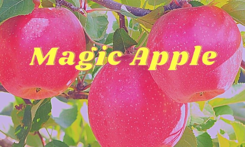 Finally Found the MAGIC APPLE!!!